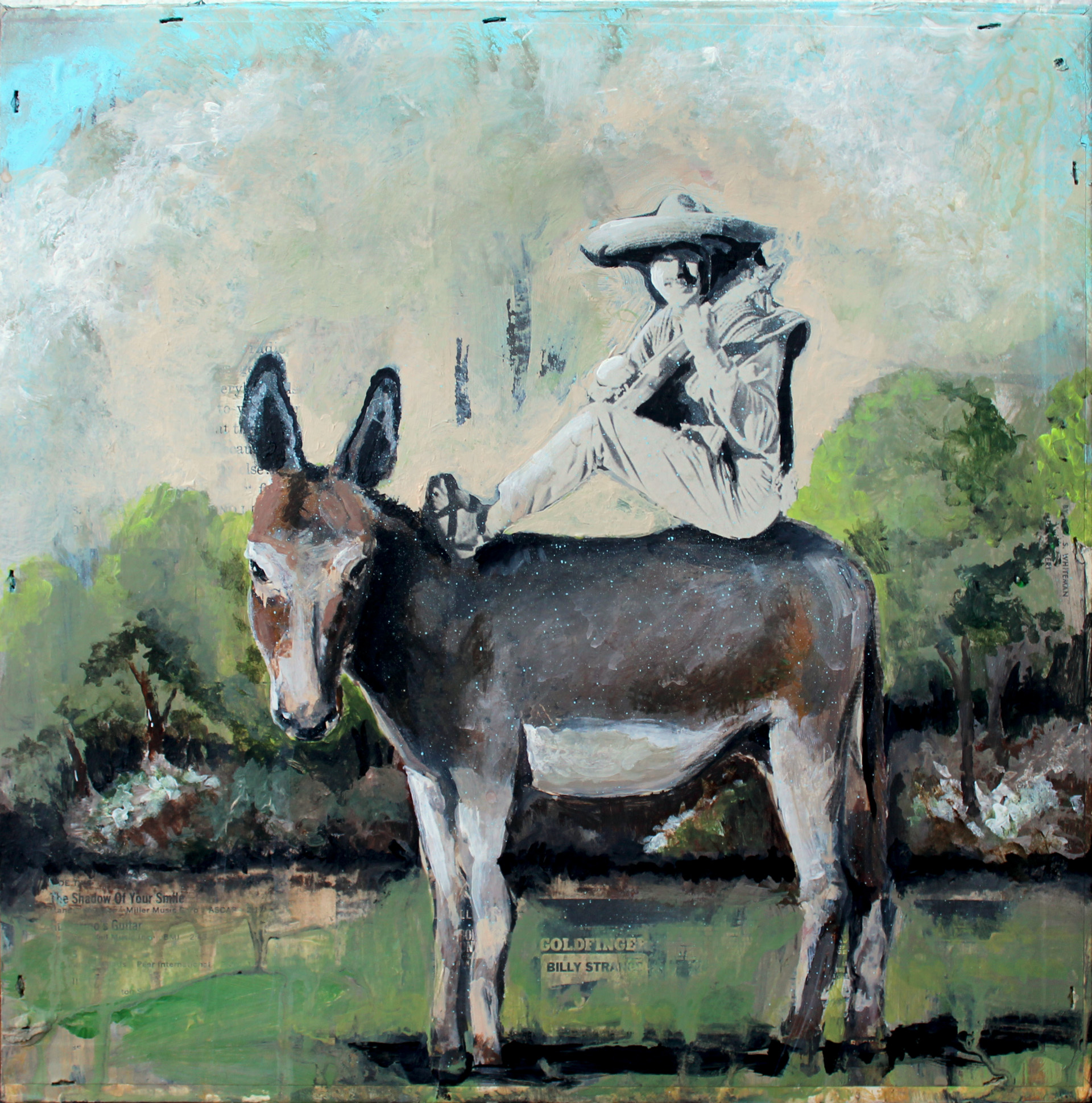 The Donkey Show_brandon Roth_2012_lores